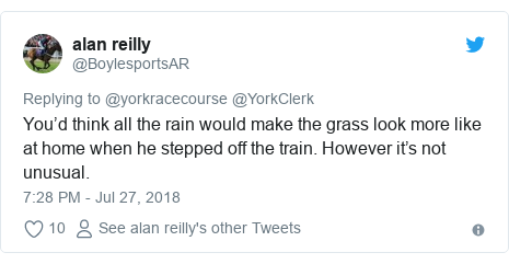 Twitter post by @BoylesportsAR: You'd think all the rain would make the grass look more like at home when he stepped off the train. However it's not unusual.