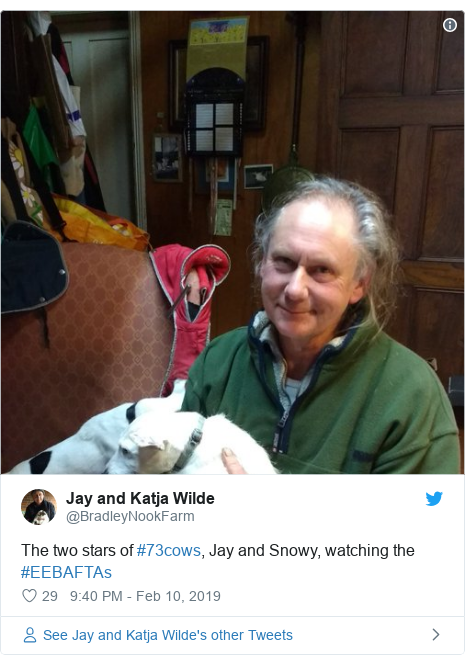 Twitter post by @BradleyNookFarm: The two stars of #73cows, Jay and Snowy, watching the #EEBAFTAs