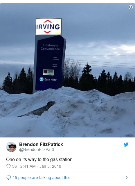 Twitter post by @BrendonFitzPat3: One on its way to the gas station
