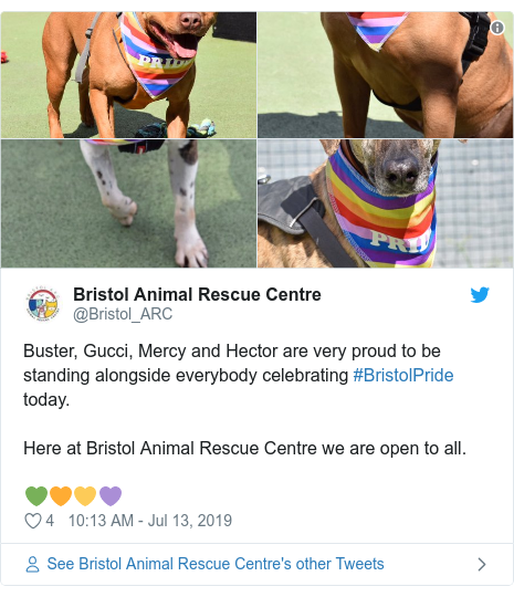 Twitter post by @Bristol_ARC: Buster, Gucci, Mercy and Hector are very proud to be standing alongside everybody celebrating #BristolPride today. Here at Bristol Animal Rescue Centre we are open to all. 💚🧡💛💜