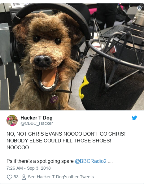 Twitter post by @CBBC_Hacker: NO, NOT CHRIS EVANS NOOOO DON'T GO CHRIS! NOBODY ELSE COULD FILL THOSE SHOES! NOOOOO...  Ps if there's a spot going spare @BBCRadio2 ....