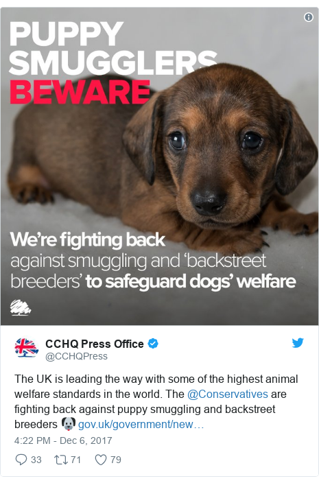 Twitter post by @CCHQPress: The UK is leading the way with some of the highest animal welfare standards in the world. The @Conservatives are fighting back against puppy smuggling and backstreet breeders 🐶