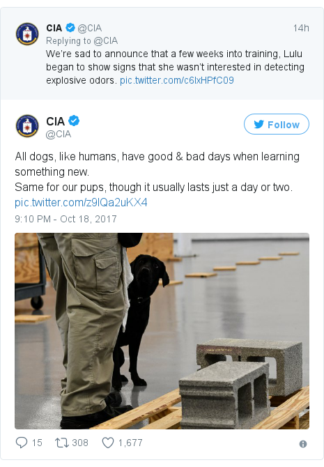 Twitter post by @CIA: All dogs, like humans, have good & bad days when learning something new.Same for our pups, though it usually lasts just a day or two.