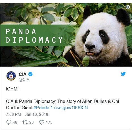 Twitter post by @CIA: ICYMI CIA & Panda Diplomacy  The story of Allen Dulles & Chi Chi the Giant #Panda
