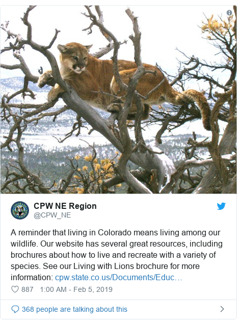 Twitter post by @CPW_NE: A reminder that living in Colorado means living among our wildlife. Our website has several great resources, including brochures about how to live and recreate with a variety of species. See our Living with Lions brochure for more information