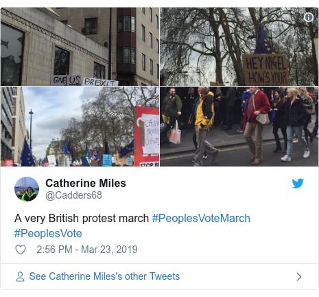 Twitter post by @Cadders68: A very British protest march #PeoplesVoteMarch #PeoplesVote