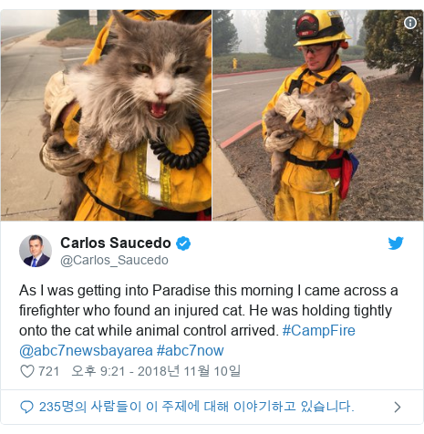 Twitter post by @Carlos_Saucedo: As I was getting into Paradise this morning I came across a firefighter who found an injured cat. He was holding tightly onto the cat while animal control arrived. #CampFire @abc7newsbayarea #abc7now
