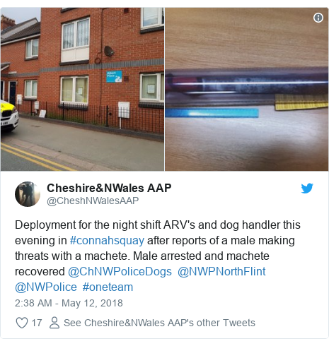 Twitter post by @CheshNWalesAAP: Deployment for the night shift ARV's and dog handler this evening in #connahsquay after reports of a male making threats with a machete. Male arrested and machete recovered @ChNWPoliceDogs  @NWPNorthFlint  @NWPolice  #oneteam