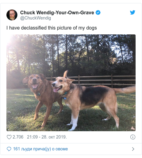Twitter post by @ChuckWendig: I have declassified this picture of my dogs