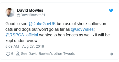 Twitter post by @DavidBowles21: Good to see @DefraGovUK ban use of shock collars on cats and dogs but won't go as far as @GovWales; @RSPCA_official wanted to ban fences as well - it will be kept under review