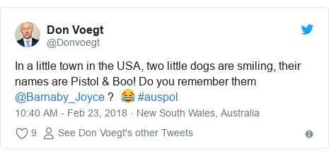 Twitter post by @Donvoegt: In a little town in the USA, two little dogs are smiling, their names are Pistol & Boo! Do you remember them @Barnaby_Joyce ?  😂 #auspol