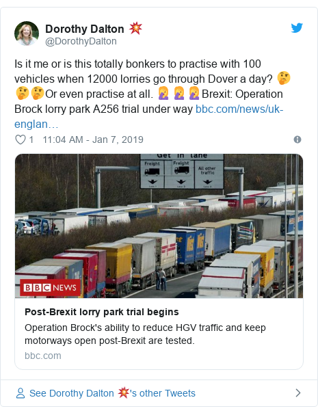 Twitter post by @DorothyDalton: Is it me or is this totally bonkers to practise with 100 vehicles when 12000 lorries go through Dover a day? 🤔🤔🤔Or even practise at all. 🤦‍♀️🤦‍♀️🤦‍♀️Brexit  Operation Brock lorry park A256 trial under way