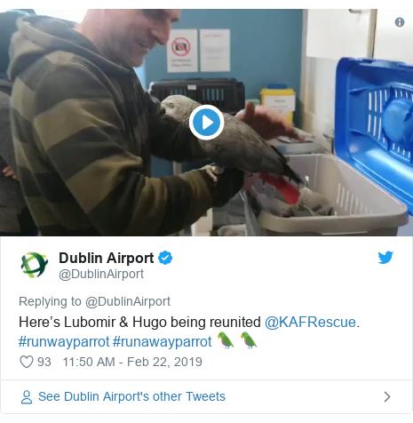 Twitter post by @DublinAirport: Here's Lubomir & Hugo being reunited @KAFRescue. #runwayparrot #runawayparrot 🦜 🦜