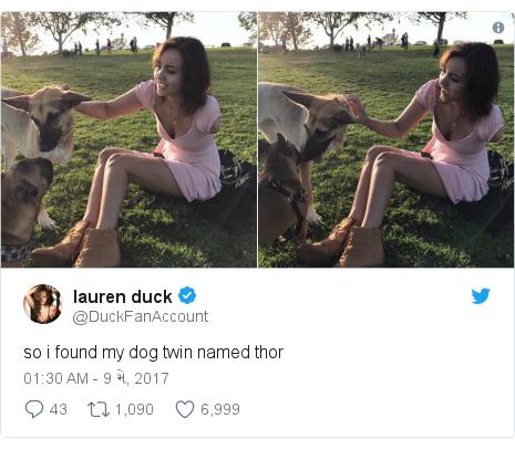 Twitter post by @DuckFanAccount: so i found my dog twin named thor