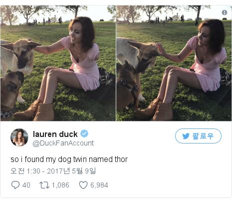 Twitter post by @DuckFanAccount: so i found my dog twin named thor pic.twitter.com/tGP6MkkL2g