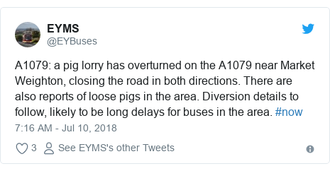 Twitter post by @EYBuses: A1079  a pig lorry has overturned on the A1079 near Market Weighton, closing the road in both directions. There are also reports of loose pigs in the area. Diversion details to follow, likely to be long delays for buses in the area. #now