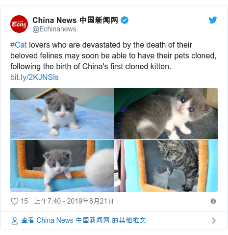 Twitter 用戶名 @Echinanews: #Cat lovers who are devastated by the death of their beloved felines may soon be able to have their pets cloned, following the birth of China's first cloned kitten.