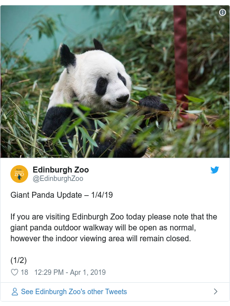 Twitter post by @EdinburghZoo: Giant Panda Update – 1/4/19If you are visiting Edinburgh Zoo today please note that the giant panda outdoor walkway will be open as normal, however the indoor viewing area will remain closed.(1/2)