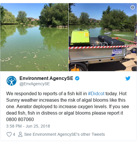 Twitter post by @EnvAgencySE: We responded to reports of a fish kill in #Didcot today. Hot Sunny weather increases the risk of algal blooms like this one. Aerator deployed to increase oxygen levels. If you see dead fish, fish in distress or algal blooms please report it 0800 807060