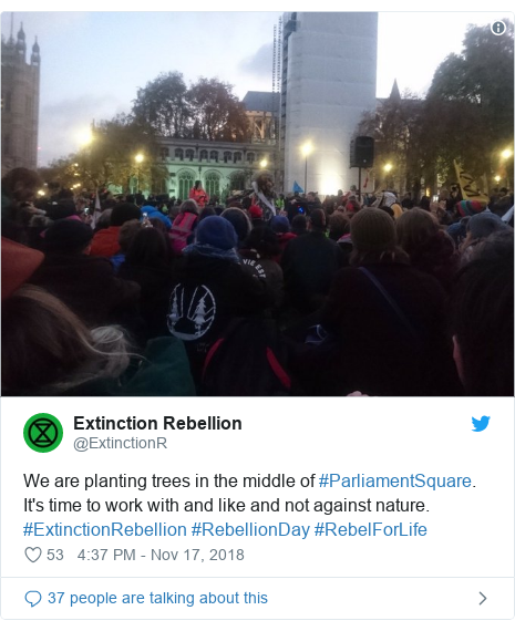 Twitter post by @ExtinctionR: We are planting trees in the middle of #ParliamentSquare. It's time to work with and like and not against nature. #ExtinctionRebellion #RebellionDay #RebelForLife