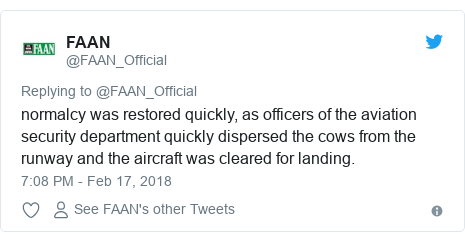 Twitter post by @FAAN_Official: normalcy was restored quickly, as officers of the aviation security department quickly dispersed the cows from the runway and the aircraft was cleared for landing.