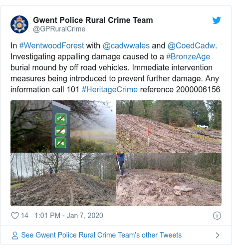 Twitter post by @GPRuralCrime: In #WentwoodForest with @cadwwales and @CoedCadw. Investigating appalling damage caused to a #BronzeAge burial mound by off road vehicles. Immediate intervention measures being introduced to prevent further damage. Any information call 101 #HeritageCrime reference 2000006156