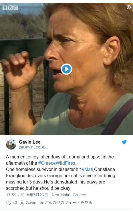 Twitter post by @GavinLeeBBC: A moment of joy, after days of trauma and upset in the aftermath of the #GreeceWildFires. One homeless survivor in disaster hit #Mati,Christiana Frangkou discovers George,her cat is alive after being missing for 3 days.He's dehydrated, his paws are scorched,but he should be okay