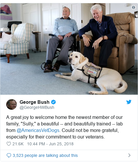 "Twitter post by @GeorgeHWBush: A great joy to welcome home the newest member of our family, ""Sully,"" a beautiful -- and beautifully trained -- lab from @AmericasVetDogs. Could not be more grateful, especially for their commitment to our veterans."