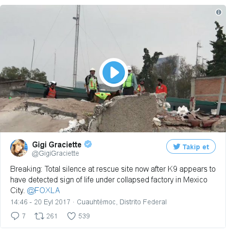 @GigiGraciette tarafından yapılan Twitter paylaşımı: Breaking  Total silence at rescue site now after K9 appears to have detected sign of life under collapsed factory in Mexico City. @FOXLA pic.twitter.com/lTE9HP8miG