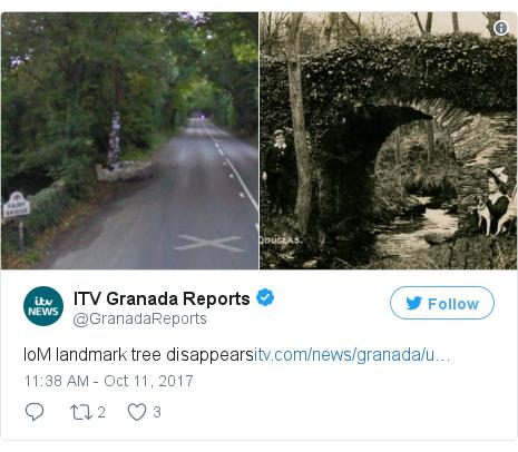 Twitter post by @GranadaReports: IoM landmark tree disappearshttps //t.co/lHjuEpKBWC pic.twitter.com/vtwM82X9tz