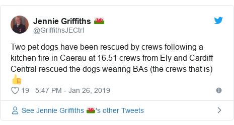 Twitter post by @GriffithsJECtrl: Two pet dogs have been rescued by crews following a kitchen fire in Caerau at 16.51 crews from Ely and Cardiff Central rescued the dogs wearing BAs (the crews that is) 👍