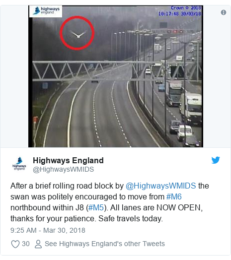 Twitter post by @HighwaysWMIDS: After a brief rolling road block by @HighwaysWMIDS the swan was politely encouraged to move from #M6 northbound within J8 (#M5). All lanes are NOW OPEN, thanks for your patience. Safe travels today.