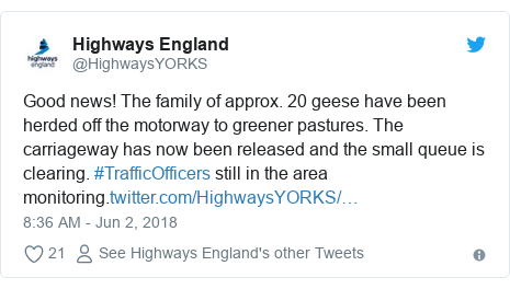 Twitter post by @HighwaysYORKS: Good news! The family of approx. 20 geese have been herded off the motorway to greener pastures. The carriageway has now been released and the small queue is clearing. #TrafficOfficers still in the area monitoring.