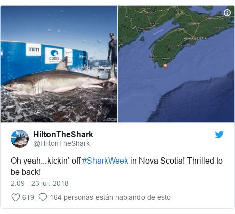 Publicación de Twitter por @HiltonTheShark: Oh yeah...kickin' off #SharkWeek in Nova Scotia! Thrilled to be back!