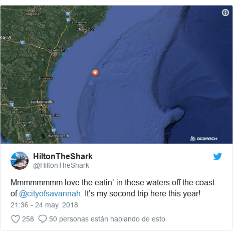 Publicación de Twitter por @HiltonTheShark: Mmmmmmmm love the eatin' in these waters off the coast of @cityofsavannah. It's my second trip here this year!
