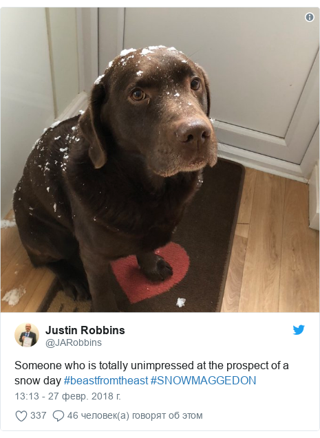 Twitter post by @JARobbins: Someone who is totally unimpressed at the prospect of a snow day #beastfromtheast #SNOWMAGGEDON