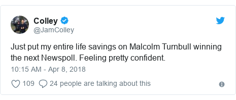 Twitter post by @JamColley: Just put my entire life savings on Malcolm Turnbull winning the next Newspoll. Feeling pretty confident.
