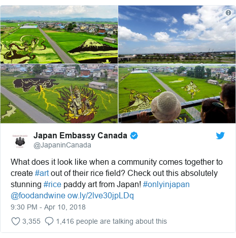 Twitter post by @JapaninCanada: What does it look like when a community comes together to create #art out of their rice field? Check out this absolutely stunning #rice paddy art from Japan! #onlyinjapan  @foodandwine