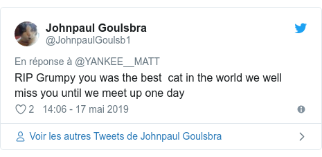 Twitter publication par @JohnpaulGoulsb1: RIP Grumpy you was the best  cat in the world we well miss you until we meet up one day