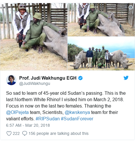 Twitter post by @JudiWakhungu: So sad to learn of 45-year old Sudan's passing. This is the last Northern White Rhino! I visited him on March 2, 2018. Focus in now on the last two females. Thanking the @OlPejeta team, Scientists, @kwskenya team for their valiant efforts. #RIPSudan #SudanForever