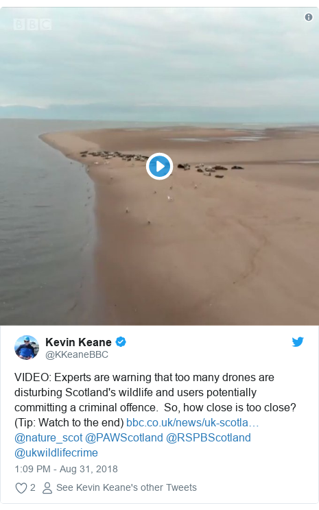 Twitter post by @KKeaneBBC: VIDEO  Experts are warning that too many drones are disturbing Scotland's wildlife and users potentially committing a criminal offence.  So, how close is too close?  (Tip  Watch to the end)  @nature_scot @PAWScotland @RSPBScotland @ukwildlifecrime