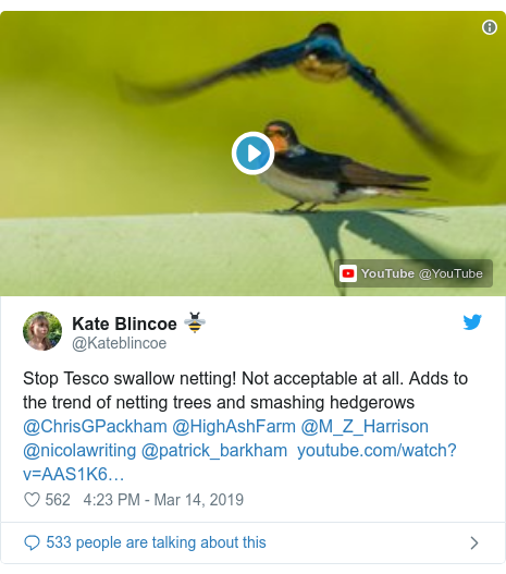 Twitter post by @Kateblincoe: Stop Tesco swallow netting! Not acceptable at all. Adds to the trend of netting trees and smashing hedgerows @ChrisGPackham @HighAshFarm @M_Z_Harrison @nicolawriting @patrick_barkham