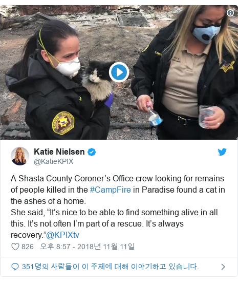 "Twitter post by @KatieKPIX: A Shasta County Coroner's Office crew looking for remains of people killed in the #CampFire in Paradise found a cat in the ashes of a home.She said, ""It's nice to be able to find something alive in all this. It's not often I'm part of a rescue. It's always recovery.""@KPIXtv"