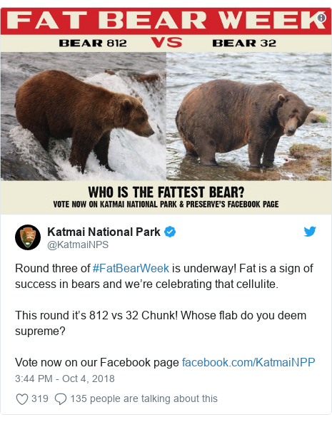 Twitter post by @KatmaiNPS: Round three of #FatBearWeek is underway! Fat is a sign of success in bears and we're celebrating that cellulite.  This round it's 812 vs 32 Chunk! Whose flab do you deem supreme?Vote now on our Facebook page