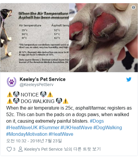 Twitter post by @KeeleysPetServ: ⚠🐶 NOTICE 🐶⚠⚠🐶 DOG WALKING 🐶⚠️When the air temperature is 25c, asphalt/tarmac registers as 52c. This can burn the pads on a dogs paws, when walked on it, causing extremely painful blisters. #Dogs #HeatWaveUK #Summer #UKHeatWave #DogWalking #MondayMotivation #HeatWave