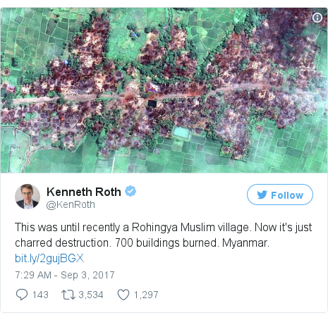 Twitter post by @KenRoth: This was until recently a Rohingya Muslim village. Now it's just charred destruction. 700 buildings burned. Myanmar. https //t.co/v8nc9yGTAS pic.twitter.com/rt4GsVVXvq