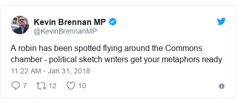 Twitter post by @KevinBrennanMP: A robin has been spotted flying around the Commons chamber - political sketch writers get your metaphors ready