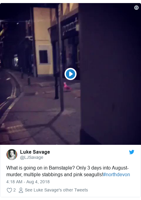 Twitter post by @LJSavage: What is going on in Barnstaple? Only 3 days into August- murder, multiple stabbings and pink seagulls!#northdevon