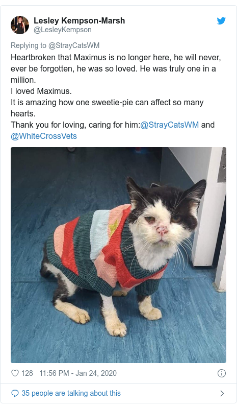 Twitter post by @LesleyKempson: Heartbroken that Maximus is no longer here, he will never, ever be forgotten, he was so loved. He was truly one in a million.I loved Maximus.It is amazing how one sweetie-pie can affect so many hearts.Thank you for loving, caring for him @StrayCatsWM and @WhiteCrossVets