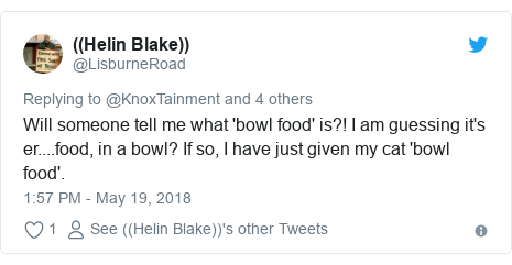 Twitter post by @LisburneRoad: Will someone tell me what 'bowl food' is?! I am guessing it's er....food, in a bowl? If so, I have just given my cat 'bowl food'.